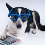 Darryl A. Hale, EA, MBA, MST's Under-Utilized Pet Tax Deductions